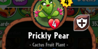 Prickly Pear/Gallery