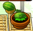 File:Medmelon.png