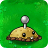 File:Potato Mine1.png