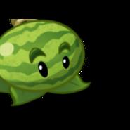 MelonpultCardImage