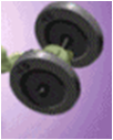 File:Barbell.png