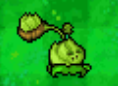 File:DS Cabbage.png