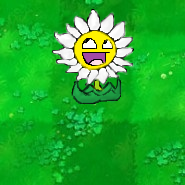 File:Epicdaisy.png