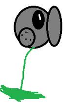 Empty pea