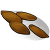 Pumpkin Seed icon