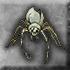 Talon spider husk