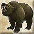 File:Halfmoon bear.png