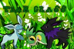 Team Grass Banner