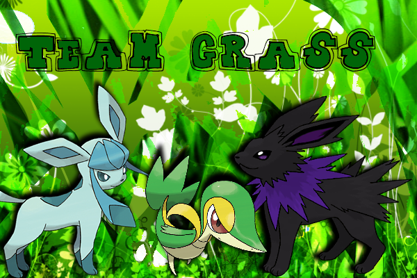 File:Team Grass Banner.png