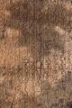Thumbnail for version as of 17:53, September 28, 2010