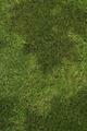 Thumbnail for version as of 23:52, September 25, 2010