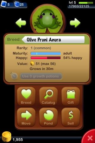 File:Olive Pruni Anura.jpg