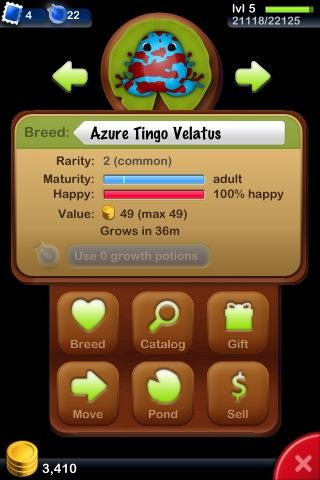 File:Azure Tingo Velatus.jpg