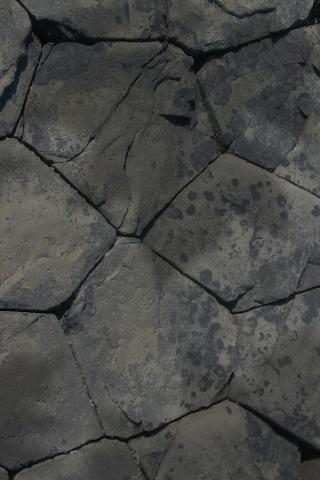 File:Rock Habitat.png