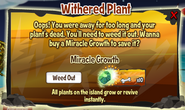 Witheredplant