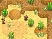 Arcalia Desert