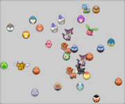 Pokefarm Eggs