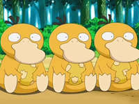 File:200px-Psyduck Eggs.png