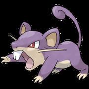 Pokemon Rattata