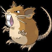 Pokemon Raticate