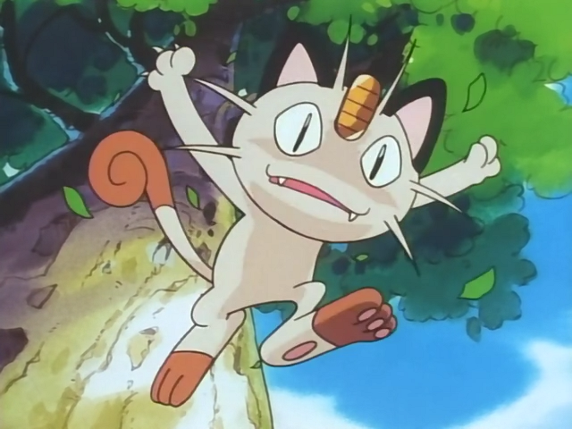 Timmy Meowth