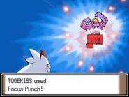 Focus Punch IV