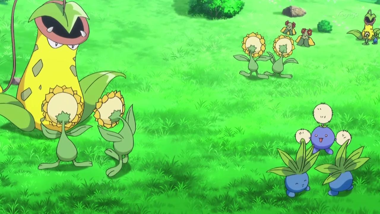 Ramos' Ranch Pokémon