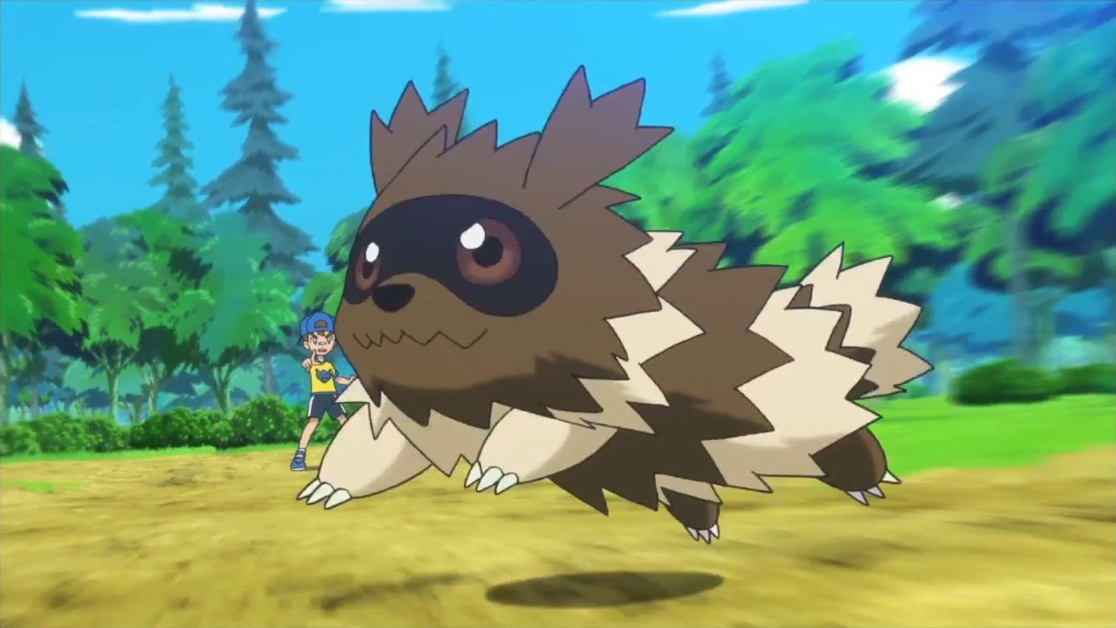 Youngster Zigzagoon