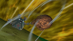 Garbodor Sludge Bomb