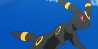 Gladion's Umbreon