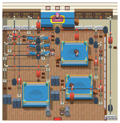 File:Veilstone Gym Pt.png