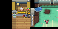 Pokémon Day Care