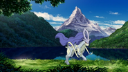 Suicune in the forest