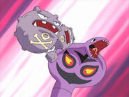Weezing and Arbok