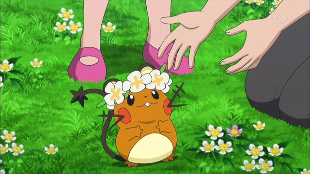 File:Clemont dedenne flower crown.jpg