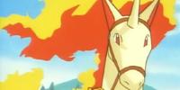 Lara's Rapidash (anime)