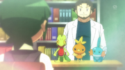 Professor Birch cameo XY