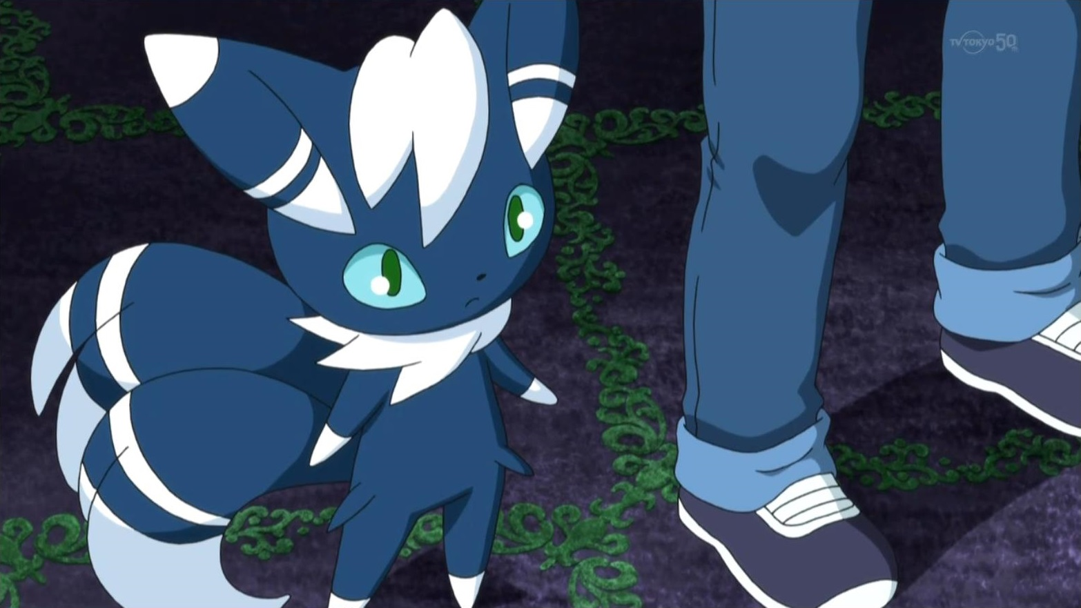 Blake S Meowstic Pok 233 Mon Wiki Fandom Powered By Wikia