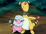 McCauley's Ampharos and Mariah's Flaaffy