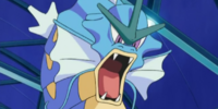 Crasher Wake's Gyarados (anime)
