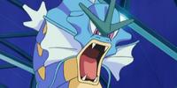 Crasher Wake's Gyarados (anime)