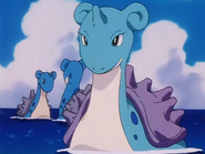 Ash Lapras Mother