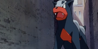 Houndour (anime)