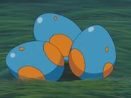 Mudkip Egg