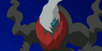 Darkrai (DP104)