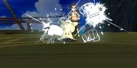 Bullet Punch