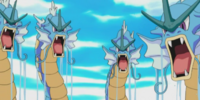 Gyarados (Chronicles)