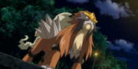 Entei (MS013)