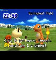 Springleaf field