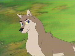 Dawn wolf9